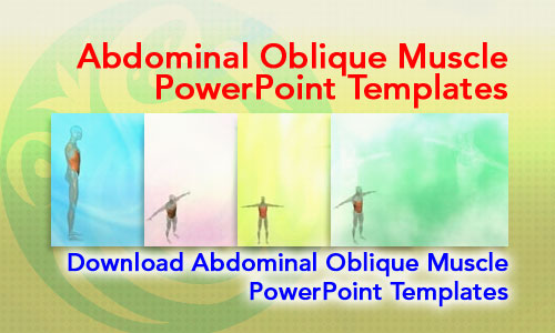 Abdominal Oblique Muscle Medicine PowerPoint Templates