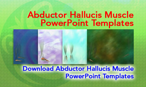 Abductor Hallucis Muscle Medicine PowerPoint Templates