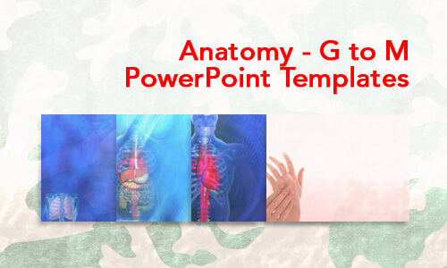 Anatomy - G to M Medical PowerPoint Templates