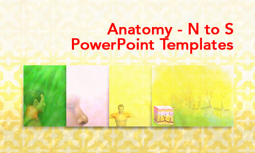 Anatomy - N to S Medical PowerPoint Templates