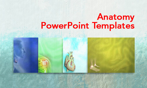 Anatomy Medical PowerPoint Templates