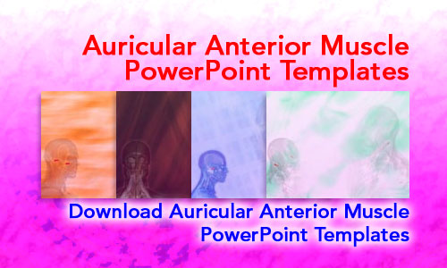 Auricular Anterior Muscle Medicine PowerPoint Templates