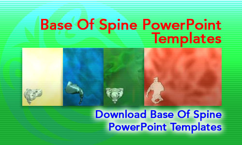 Base of Spine Medicine PowerPoint Templates