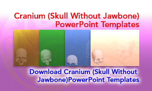 Cranium (Skull Without Jawbone) Medicine PowerPoint Templates