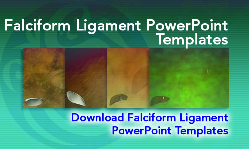 Falciform Ligament Medicine PowerPoint Templates