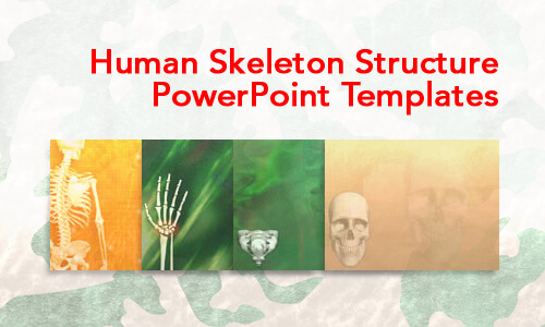 Human Skeleton Structure Medical PowerPoint Templates