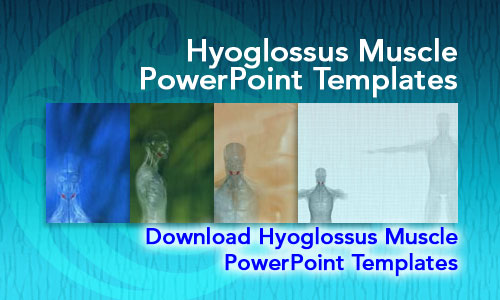 Hyoglossus Muscle Medicine PowerPoint Templates