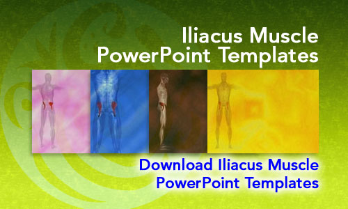 Iliacus Muscle Medicine PowerPoint Templates