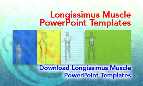 Longissimus Muscle Medicine PowerPoint Templates