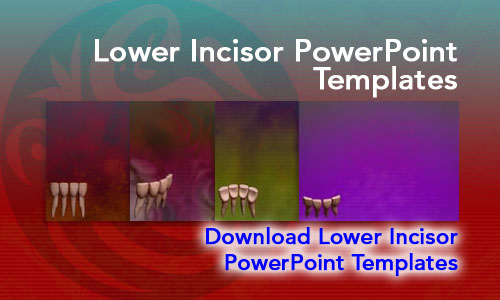 Lower Incisor Medicine PowerPoint Templates