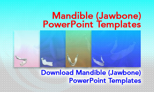 Mandible (Jawbone) Medicine PowerPoint Templates