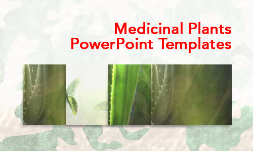 Medicinal Plants Medical PowerPoint Templates