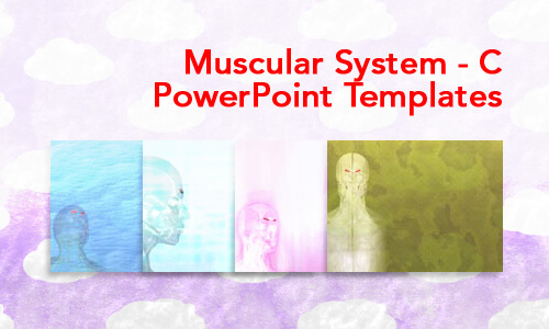 Muscular System - C Medical PowerPoint Templates