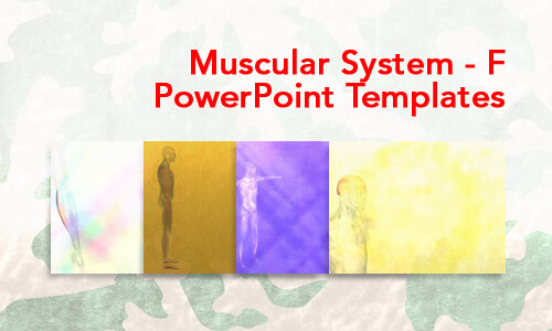 Muscular System - F Medical PowerPoint Templates