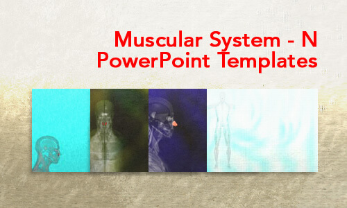 Muscular System - N Medical PowerPoint Templates