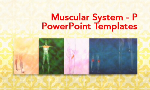 Muscular System - P Medical PowerPoint Templates