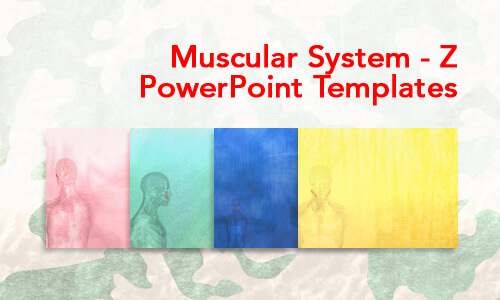 Muscular System - Z Medical PowerPoint Templates