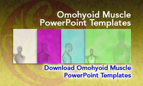 Omohyoid Muscle Medicine PowerPoint Templates