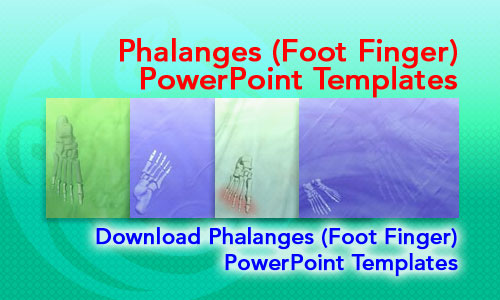 Phalanges (Foot Finger) Medicine PowerPoint Templates