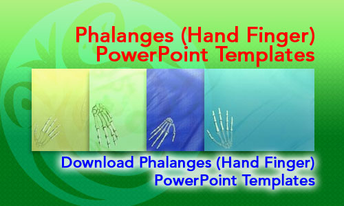 Phalanges (Hand Finger) Medicine PowerPoint Templates
