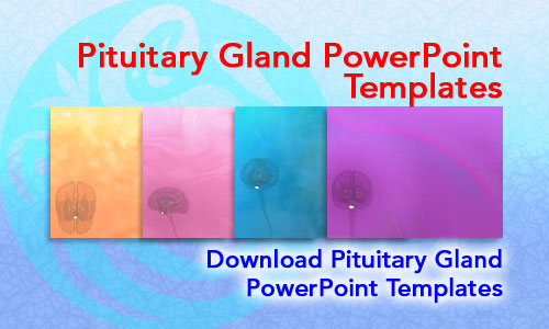 Pituitary Gland Medicine PowerPoint Templates