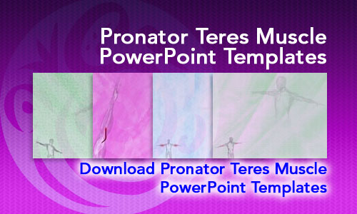 Pronator Teres Muscle Medicine PowerPoint Templates