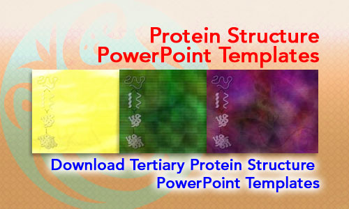 Protein Structure Medicine PowerPoint Templates