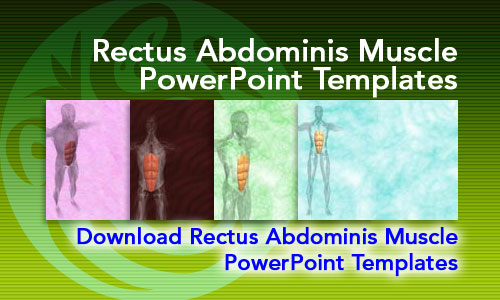 Rectus Abdominis Muscle Medicine PowerPoint Templates