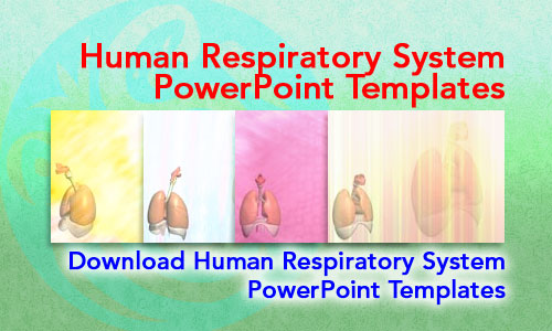 Human Respiratory System Medicine PowerPoint Templates