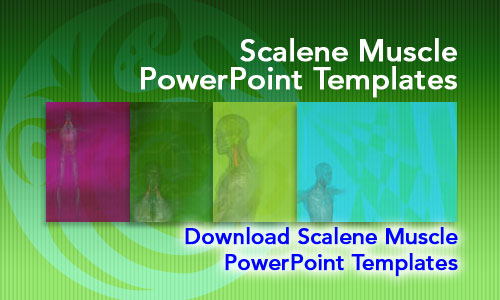 Scalene Muscle Medicine PowerPoint Templates