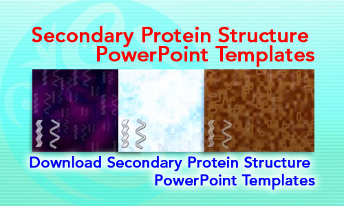 Secondary Protein Structure Medicine PowerPoint Templates