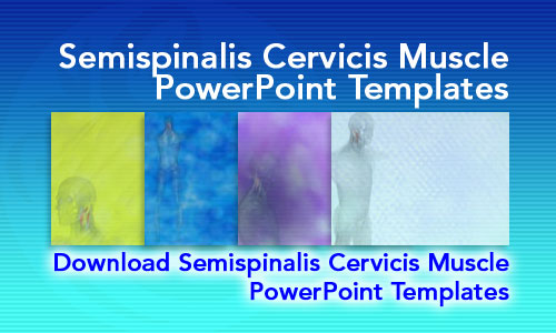 Semispinalis Cervicis Muscle Medicine PowerPoint Templates