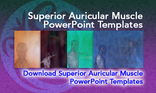Superior Auricular Muscle Medicine PowerPoint Templates