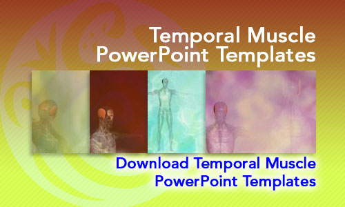 Temporal Muscle Medicine PowerPoint Templates