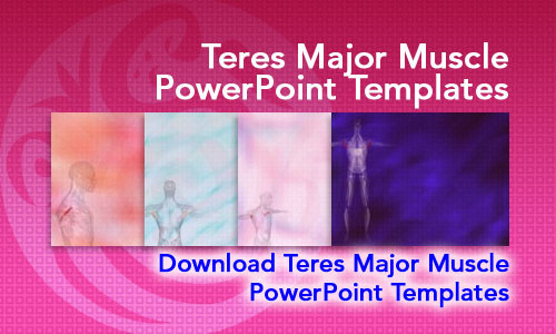 Teres Major Muscle Medicine PowerPoint Templates
