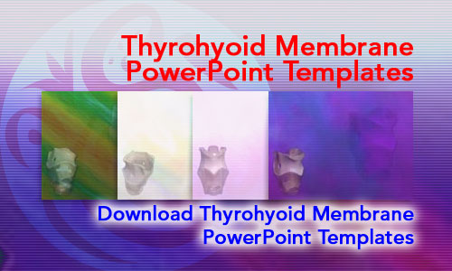 Thyrohyoid Membrane Medicine PowerPoint Templates