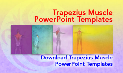 Trapezius Muscle Medicine PowerPoint Templates