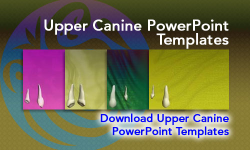 Upper Canine Medicine PowerPoint Templates