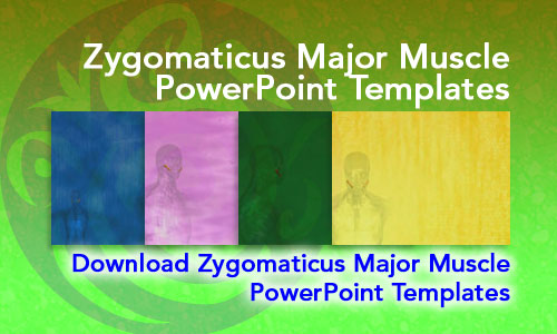 Zygomaticus Major Muscle Medicine PowerPoint Templates