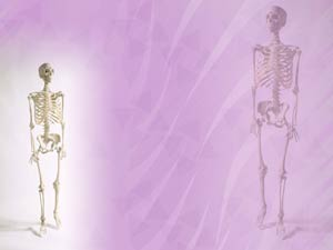 Human Skeleton Medicine PowerPoint Templates