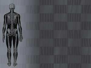 Human Skeleton 07 Medicine Powerpoint Templates