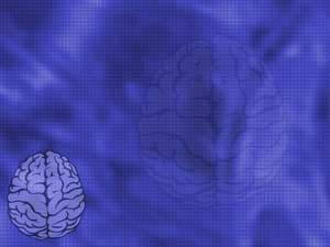 Brain 05 medicine powerpoint templates brain medicine powerpoint templates toneelgroepblik Choice Image